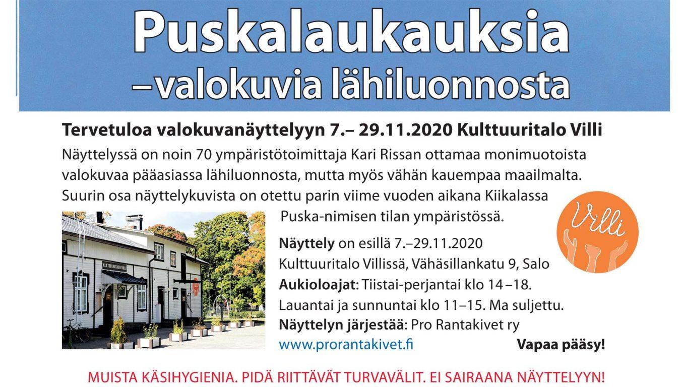 Puskalaukauksia -valokuvia lähiluonnosta Kari Rissa  Kulttuuritalo Villi 2020